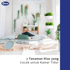 7 Tanaman Hias yang Cocok untuk Kamar Tidur